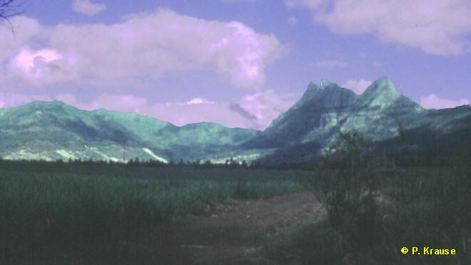 Landschaft auf Süd-Mauritius